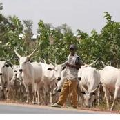 Do all the lands in the country belong to the Fulani as alleged by Miyetti Allah? Check out