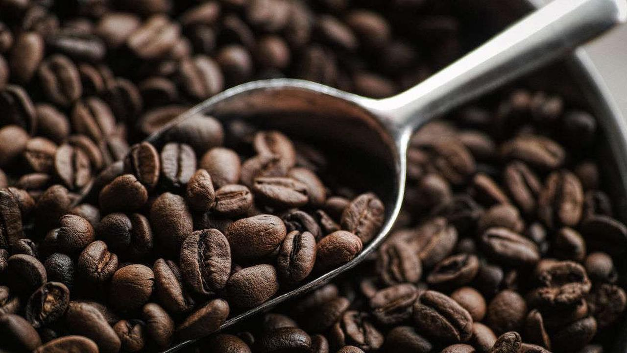 All Of The Different Types Of Coffee Beans And Drinks You Need To Know