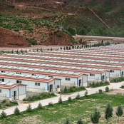 County in Tibet Autonomous Region thrives by developing sheep breeding industry