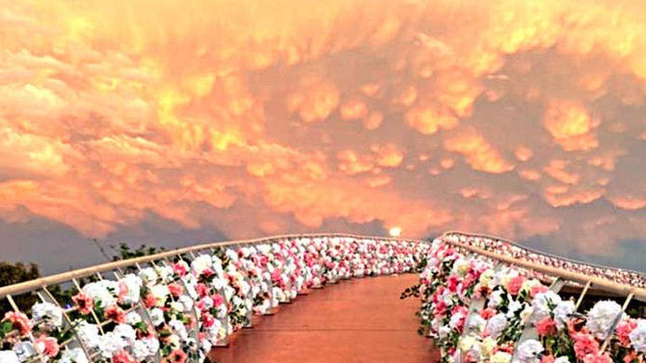 Ludovic Pouille ravi des roses de Taïf, un «trésor à découvrir»