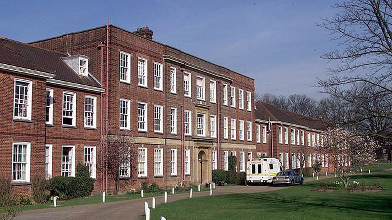 Sixth-formers at top grammar school tell girls as young as 11 how to bind their breasts to 'look more masculine' and how surgery can remove tissue if it hurts too much