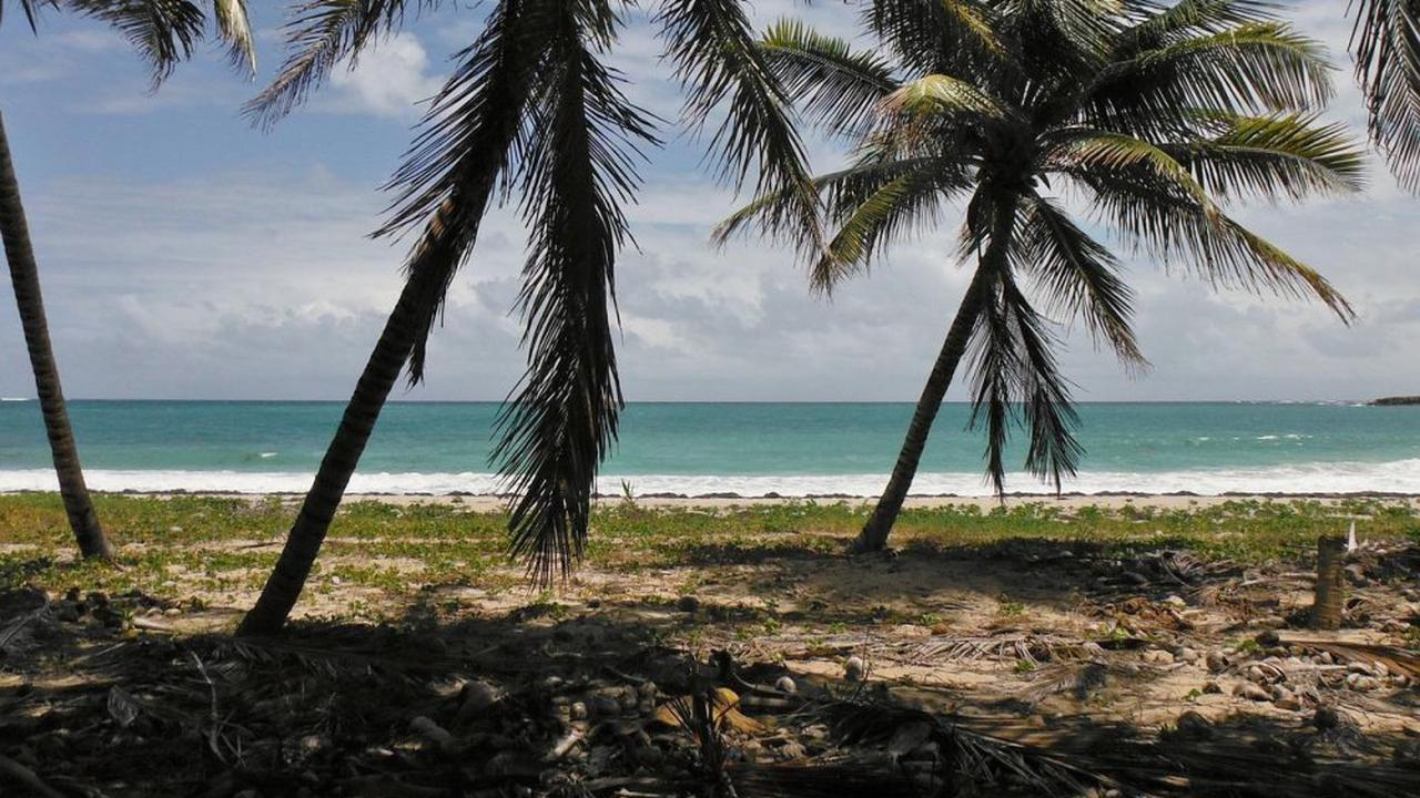 Covid : La Martinique confinée pour trois semaines dès ce vendredi soir