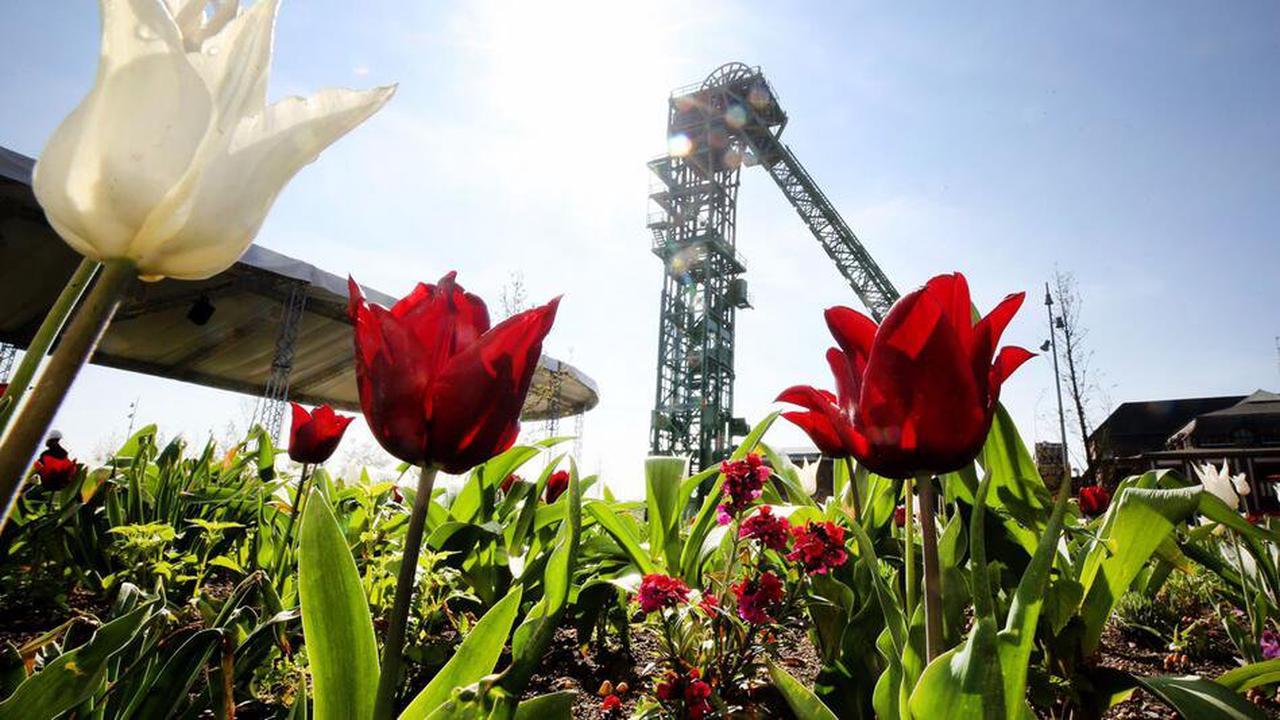 Baustart für die Landesgartenschau 2023