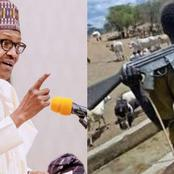 President Buhari Orders Security Agents To Shoot Anyone Carrying 'Illegal' Ak-47