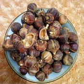 Goron Tula: A 'miracle' fruit bringing prosperity to Gombe rural community