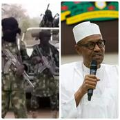 Today's Headlines: Boko Haram Kills Four Persons In Borno, Buhari Appoints Dagari.