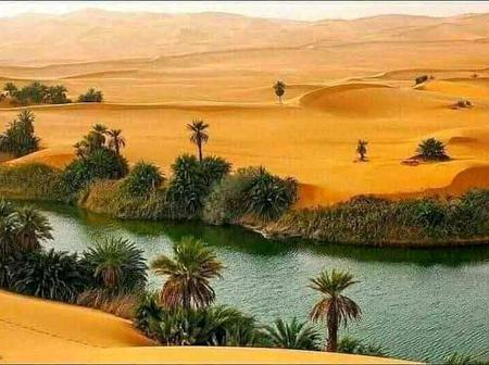 See an Oasis in Yusufari Local Government Area of Yobe State