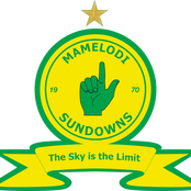 Sundowns defender pushes for exit