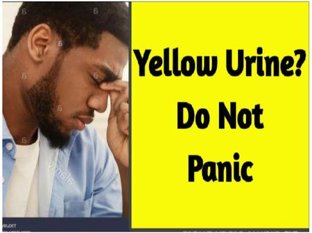 If Your Urine Comes Out Yellow, Do Not Panic. This Is What It Means.
