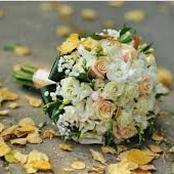 قصة.. انتهي الزفاف وعاد العروسان الي شقتهم.. وبعد دقائق من دخول العروس الشقة طلبت الطلاق فوراً