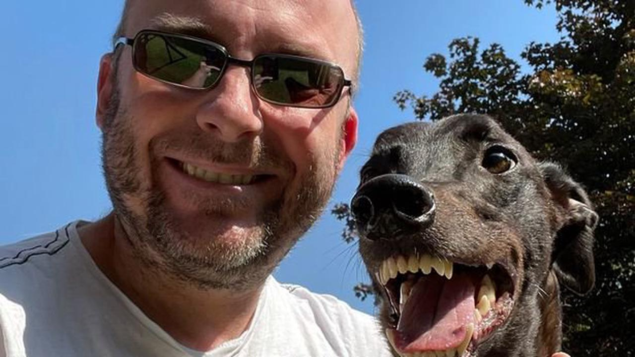 Ex-racing greyhound with goofy grin is now loving life with his new owner