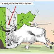 Cartoon About How Cow Caused Disunity In Nigeria Sparks Reactions