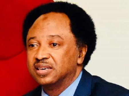 Bandits Are Godless, Pastors And Imams Should Suspend Preaching For Easter And Ramadan - Shehu Sani