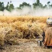 قصة.. هبت الرياح فأهلكت محصوله كاملاً..جلس على ركبتيه يبكي فاهتزت الأرض تحت قدمه وكانت الصدمة