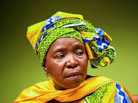 Not Again  Dlamini Zuma Drops A Bombshell on South Africa About The Lockdown