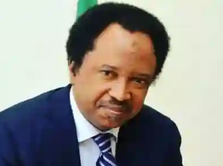Which is Givenchy? Fan Asked as Shehu Sani Said Onion is Now Gucci and Tomatoes now Prada.