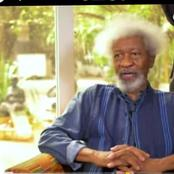 Northwest Insecurity: Banditry emanated from Zamfara because of illegal gold mining- Wole Soyinka