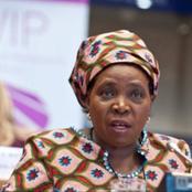 Dlamini-Zuma - Most Recent News On Cigarettes Ban