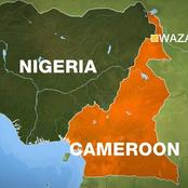 Cameroon Demands More Areas In Borno And Adamawa States.