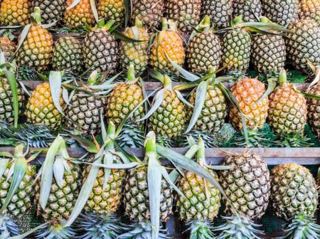 Avocado vs pineapple:see which is the best for you