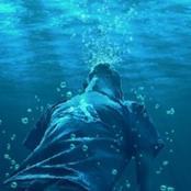 غرق في البحر فانقذته ثم ألقيته مرة أخرى لهذا السبب! (قصة)