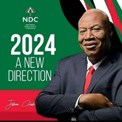 Campaign Posters Of Prof. Alabi For 2024 Pops Up