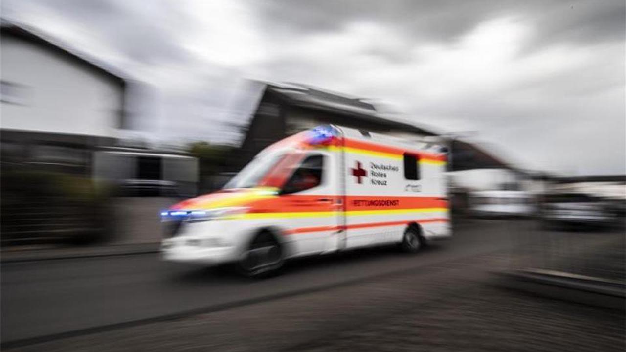Radfahrer stürzt nach Zusammenstoß mit Hund: Schwer verletzt