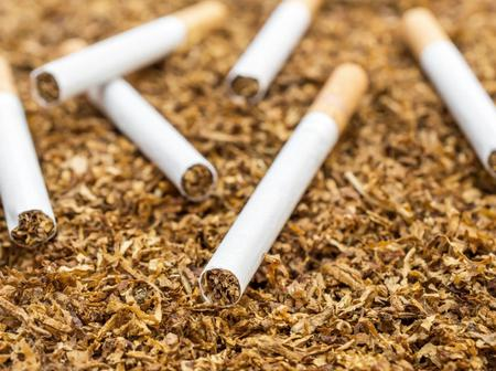 Your health is in danger with tobacco read this