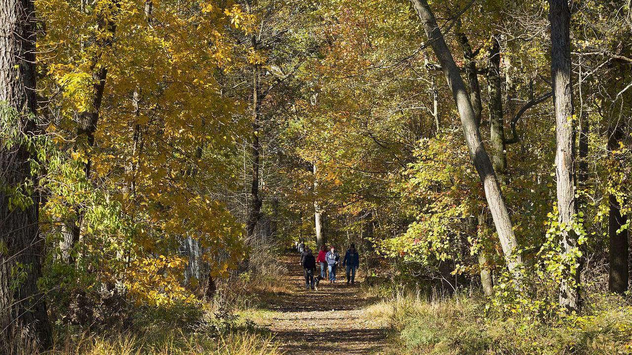 Start the new year off on the right foot with these 8 winter hikes around New Jersey