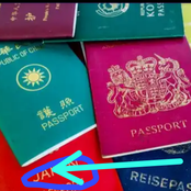 This is the strongest passport that can offer its holders free Visa access to 191 countries