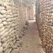 Igbo farmer shares pictures of yam barn inherited from his late father