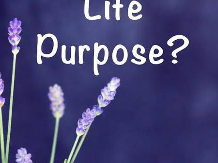 8 Reasons Why People Don't Discover & Fulfill Their Purpose/Destiny
