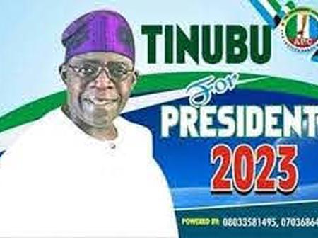 OPINION: Asiwaju Tinubu Has All It Takes To Be Nigeria`s President In 2023