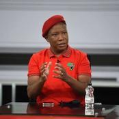 EFF leader Julius Malema begs Ramaphosa for cabinet reshuffle