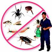 Pests And Pest Control