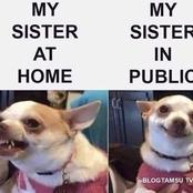Make Your Day Full Of Laughter By Seeing This Funny Memes