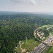 La forêt du banco, deuxième plus grande réserve naturelle au monde