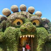 World First Ever Plant-Theme Amusement Park That Leaves You In Awe(PHOTOS)