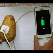 Charging Your Phone With a Potato