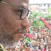 Opinion: Majority of Nnamdi Kalu followers are too aggressive and troublesome