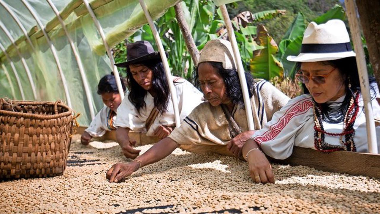 Nordstemmer Kaffee ist jetzt zu 100 Prozent klimaneutral
