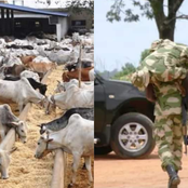 News: Igboho And Others Campaign Against Eating Of Beef, Army Officer Caught Assisting Bandits