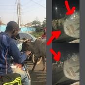 See What Fulani Herdsmen Were Spotted Doing On A Busy Road In Anambra At Night (Watch Video)