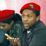 Our Vision is Not to put South Africans Our Vision s Not to put South Africans  First says  Mbuyiseni Ndlozi / opinion