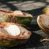 how to remove cholesterol from your body using coconut husk