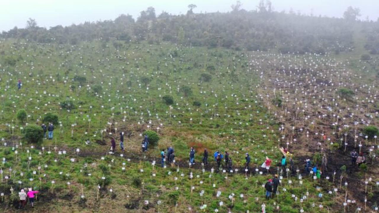 Colombia death toll from Covid-19 tops 100,000