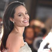 Angelina Jolie sells Winston Churchill painting for record £7m