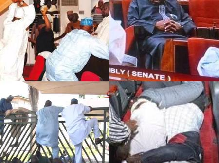 17 Hilarious Photos of Our Senators Sleeping, Climbing Fence, and Fighting in the National Assembly