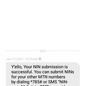 Steps To Check If Your NIN Verification Was Successful After Submitting It To Your Network Providers