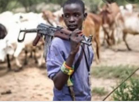 Gunmen suspected to be herdsmen killed a pastor and adopt one in Ekiti